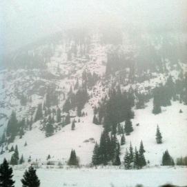 26 Colorado